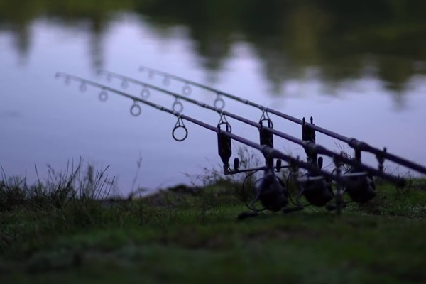 Daiwa Powermesh Review