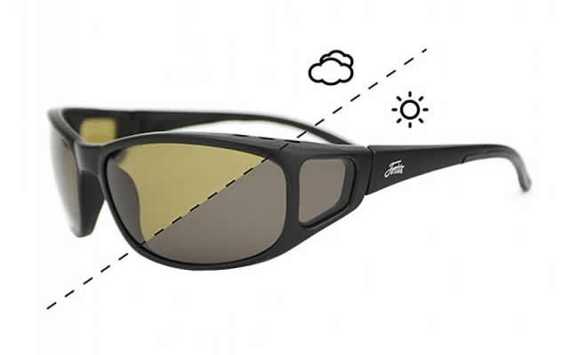 Fortis Switch Sunglasses