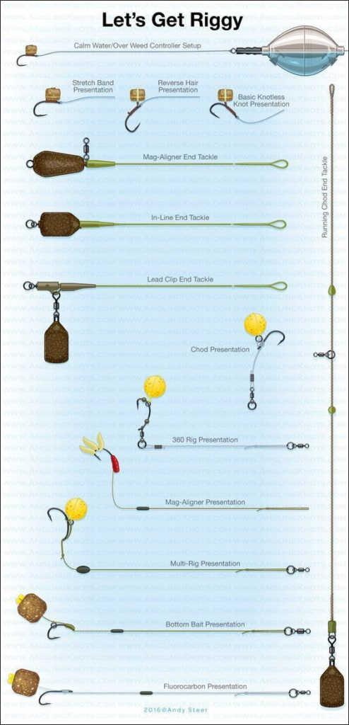 Carp rig diagram for beginners