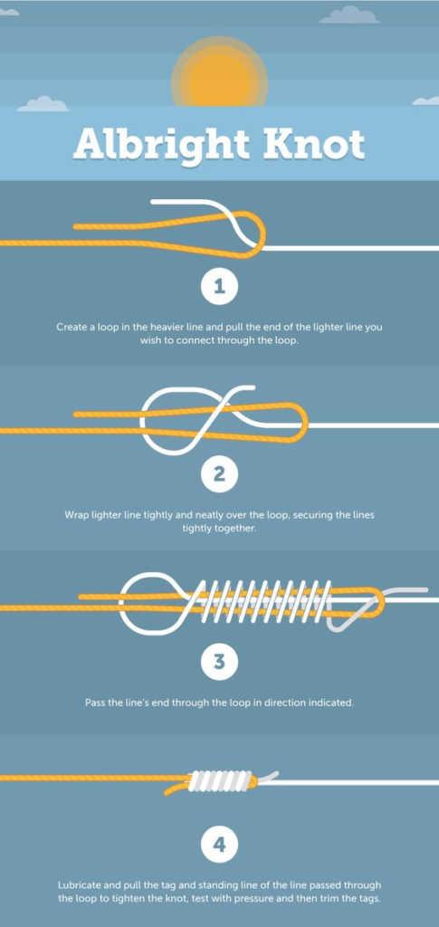 10 Best Carp Rigs & Setups (2019 with Diagrams) 19