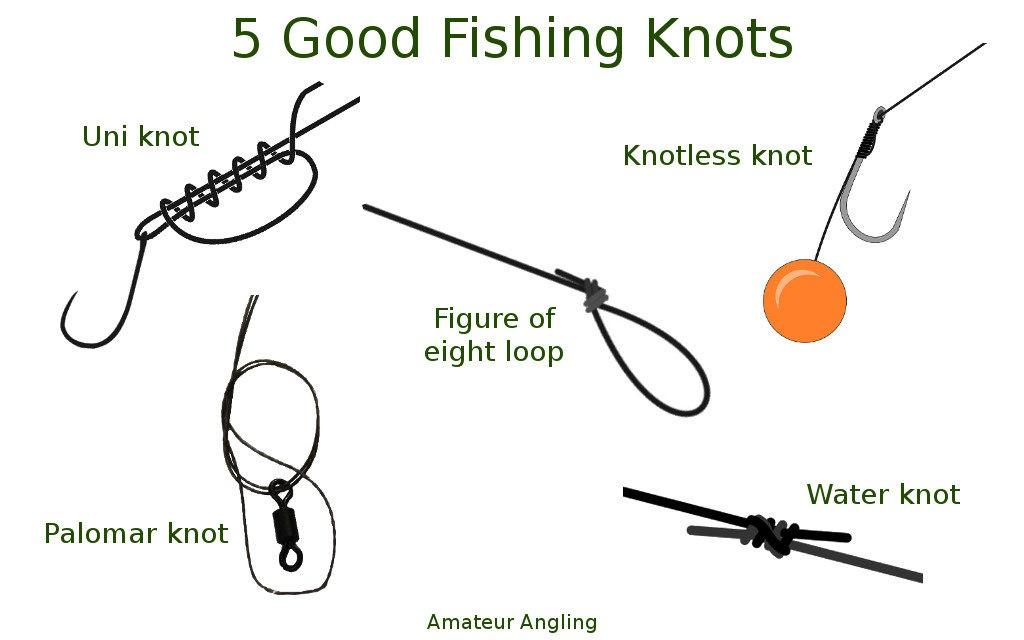 Carp Fishing for Beginners Roundup Posts 1
