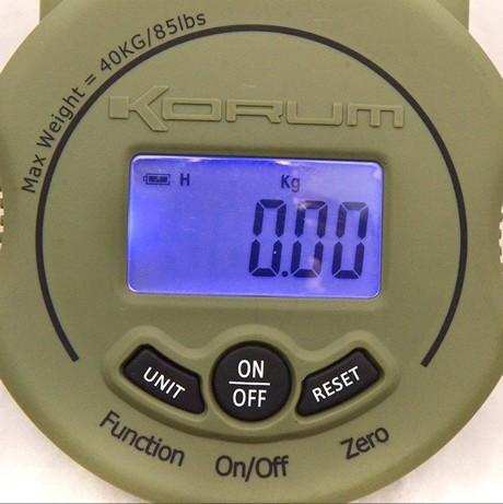 Carp Scales