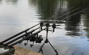 Nash dwarf rods in action