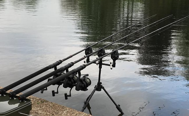 Nash dwarf rods in action