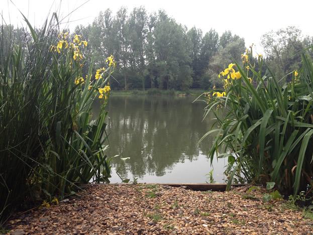 Olivemead Lake
