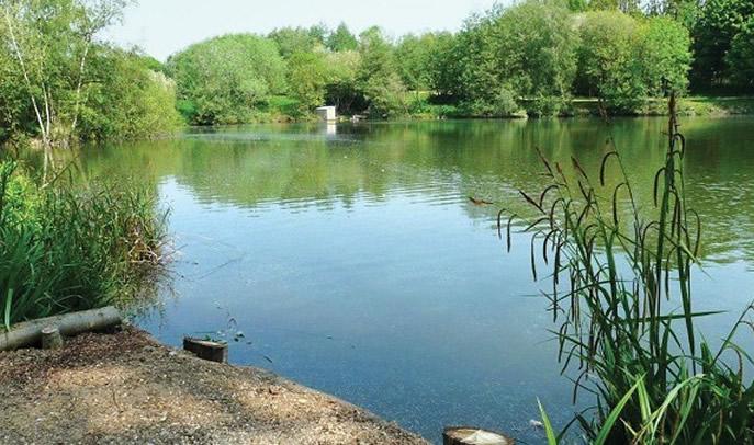 Seven Lakes Carp Fishery
