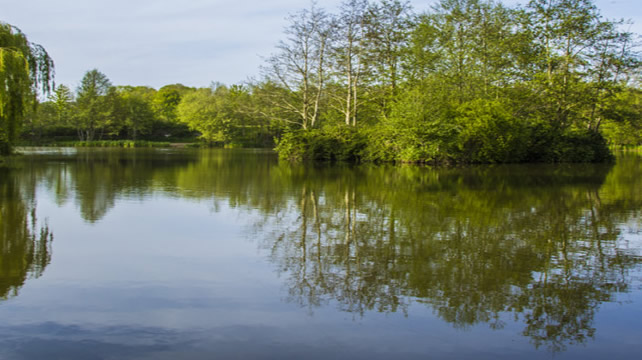 edenbrook fishing