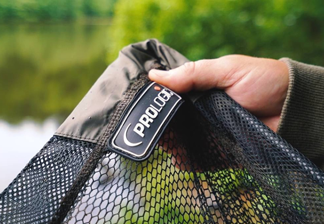 Best Landing Nets For Carp