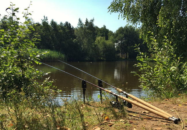 10ft Carp Rods A Buyers Guide