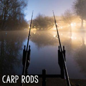 best carp rod under 100