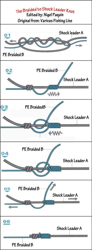 A shockleader knot for carp fishing